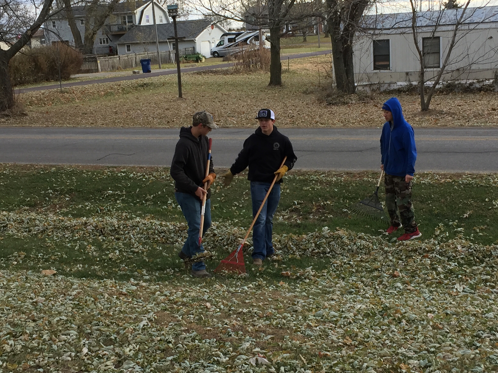 Jr.'s raking leaves